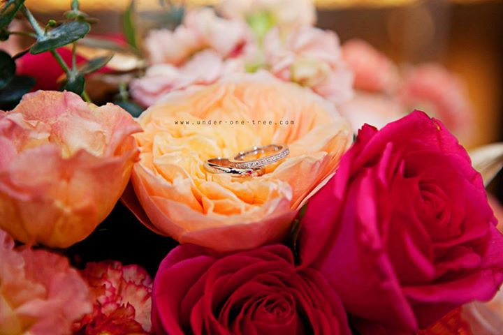 flowers-rings-under-one-tree-media