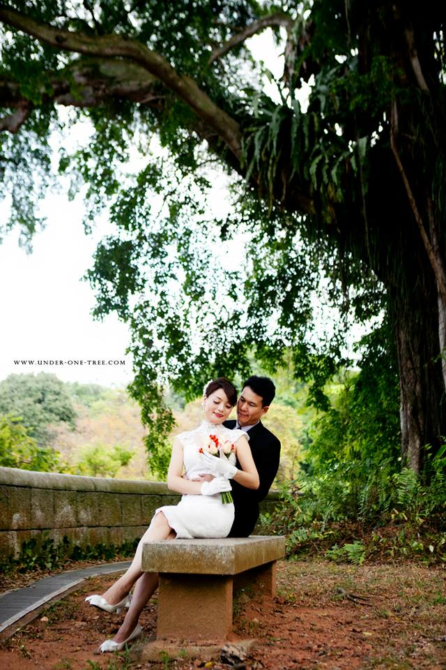 prenup-shoot-under-one-tree
